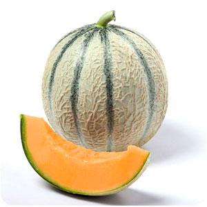 Melon est laxatif